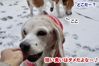 雪遊び 7