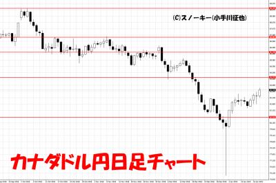 20190119カナダドル円日足チャート
