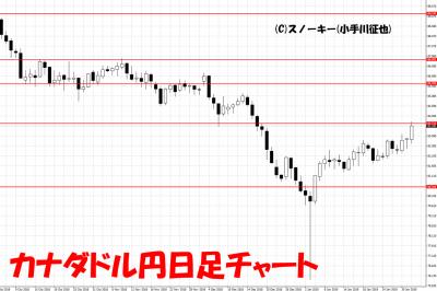 20190202カナダドル円日足チャート
