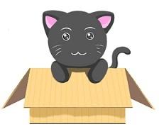 黒猫だんぼーる