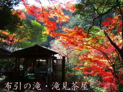mini_2212_takimityaya2_DSCF6093.jpg
