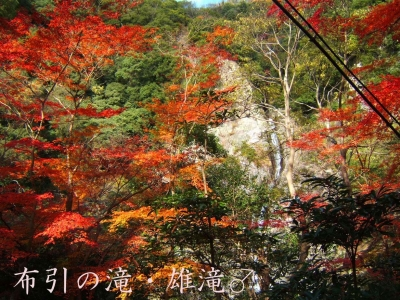 mini_2213_nunohikinotaki_DSCF6101.jpg