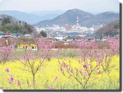 mini_3317_hanamiyama_P4086834.jpg