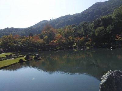 天龍寺曹源池20181026~2723070 (37)