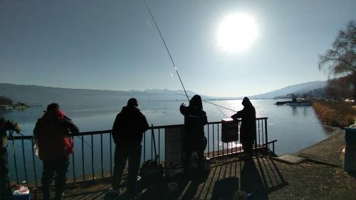 2月3日の諏訪湖だけど、ほとんど結氷していない。