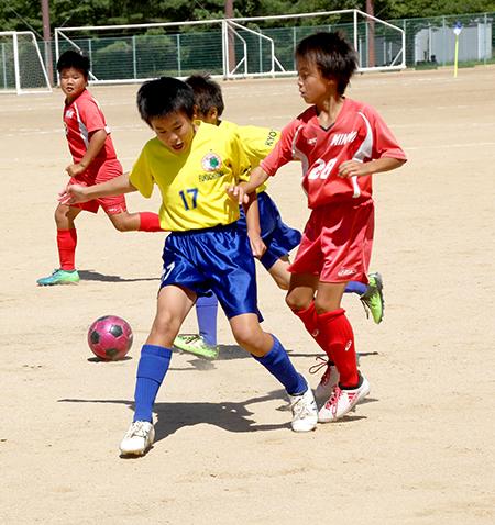 1811サッカーHP_0595