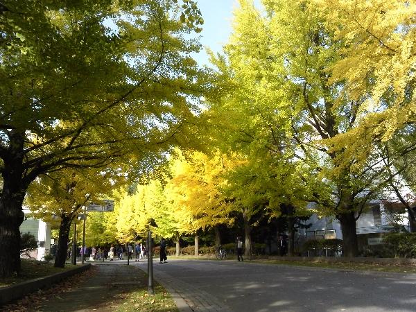 中島公園04