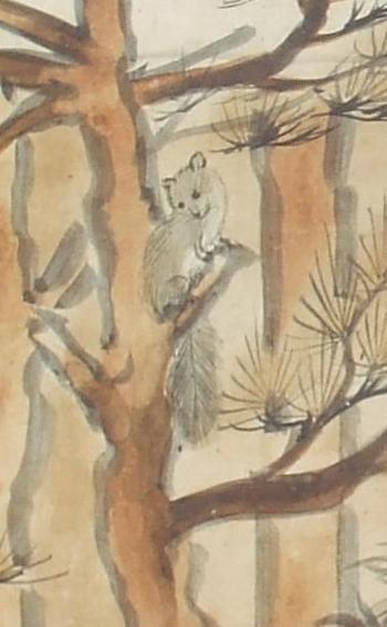 鳥獣戯画 特別展 06