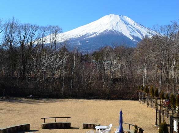 20190103wansresort富士山が見えるドッグラン