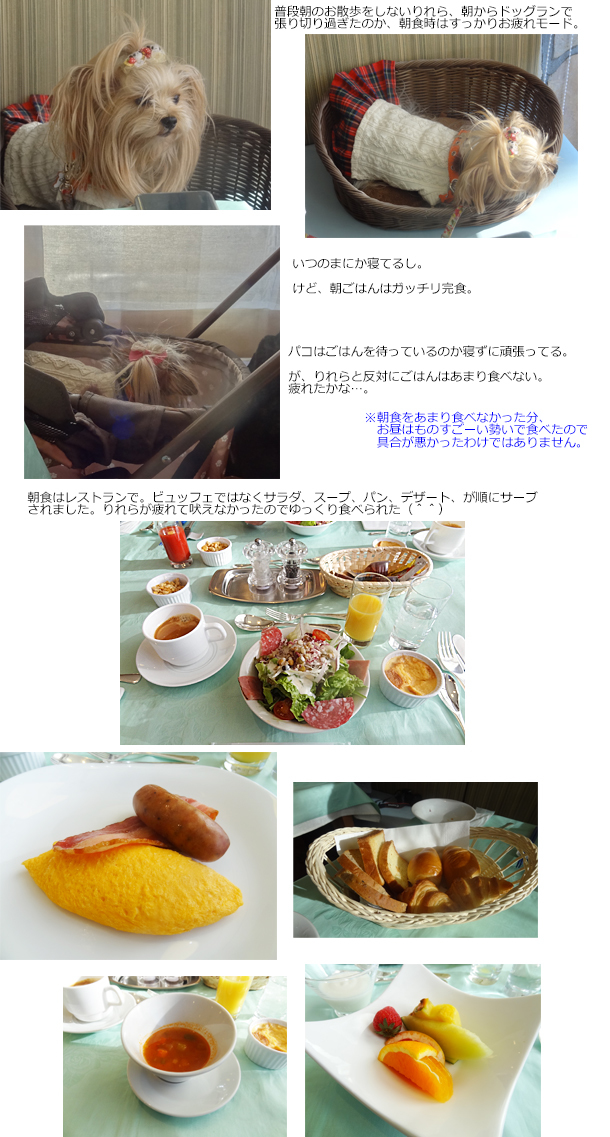 20190104wansresort朝食