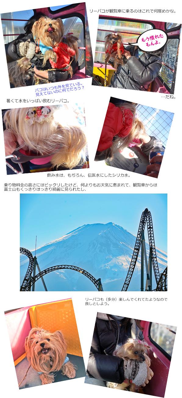 20190104_3富士急ハイランド観覧車S①