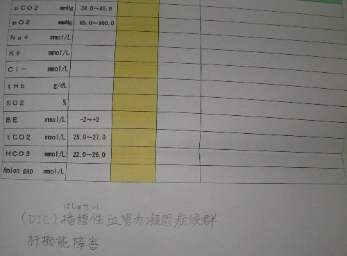 20181031動物病院明細⑧-1