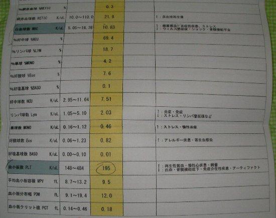 20181031動物病院明細⑥-1