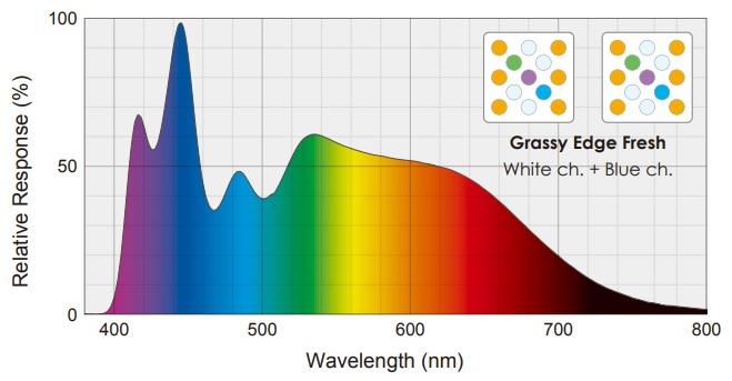 グラッシースペクトル