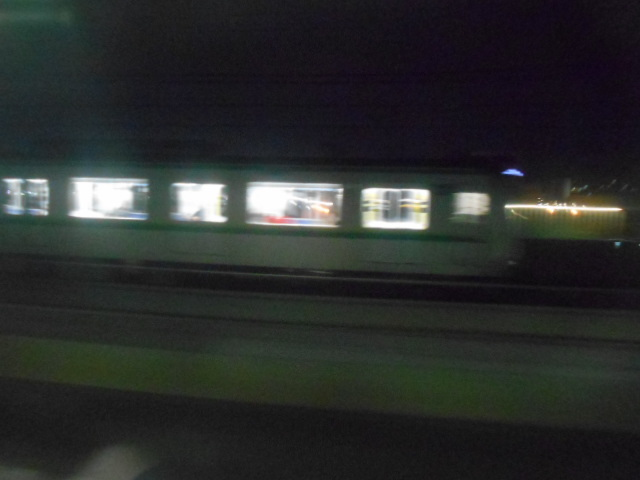DSCN1390.jpg
