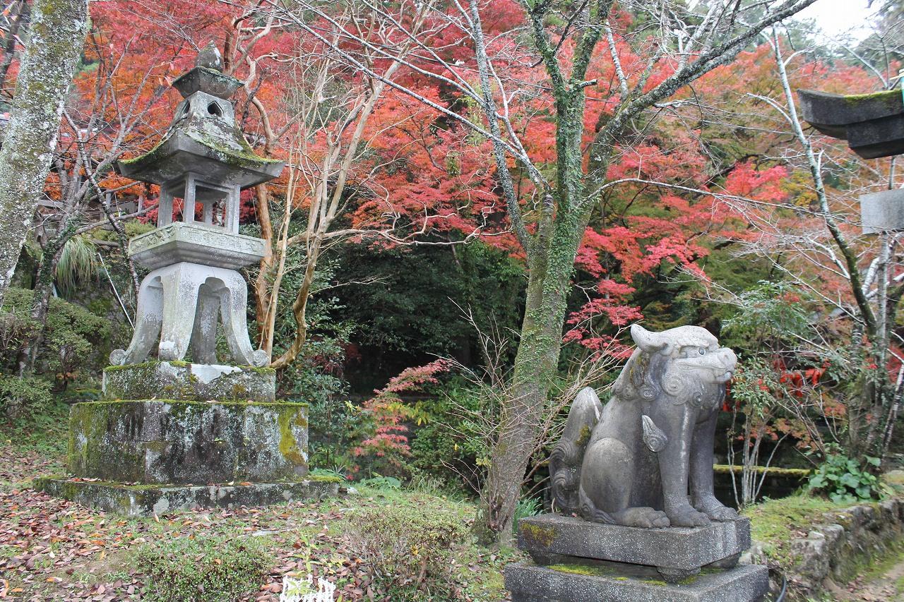 木戸神社紅葉