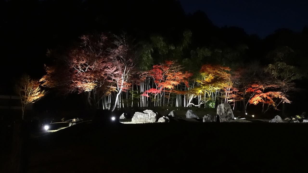 雪舟庭秋のライトアップ2017
