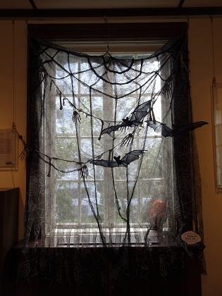 窓にはコウモリ!