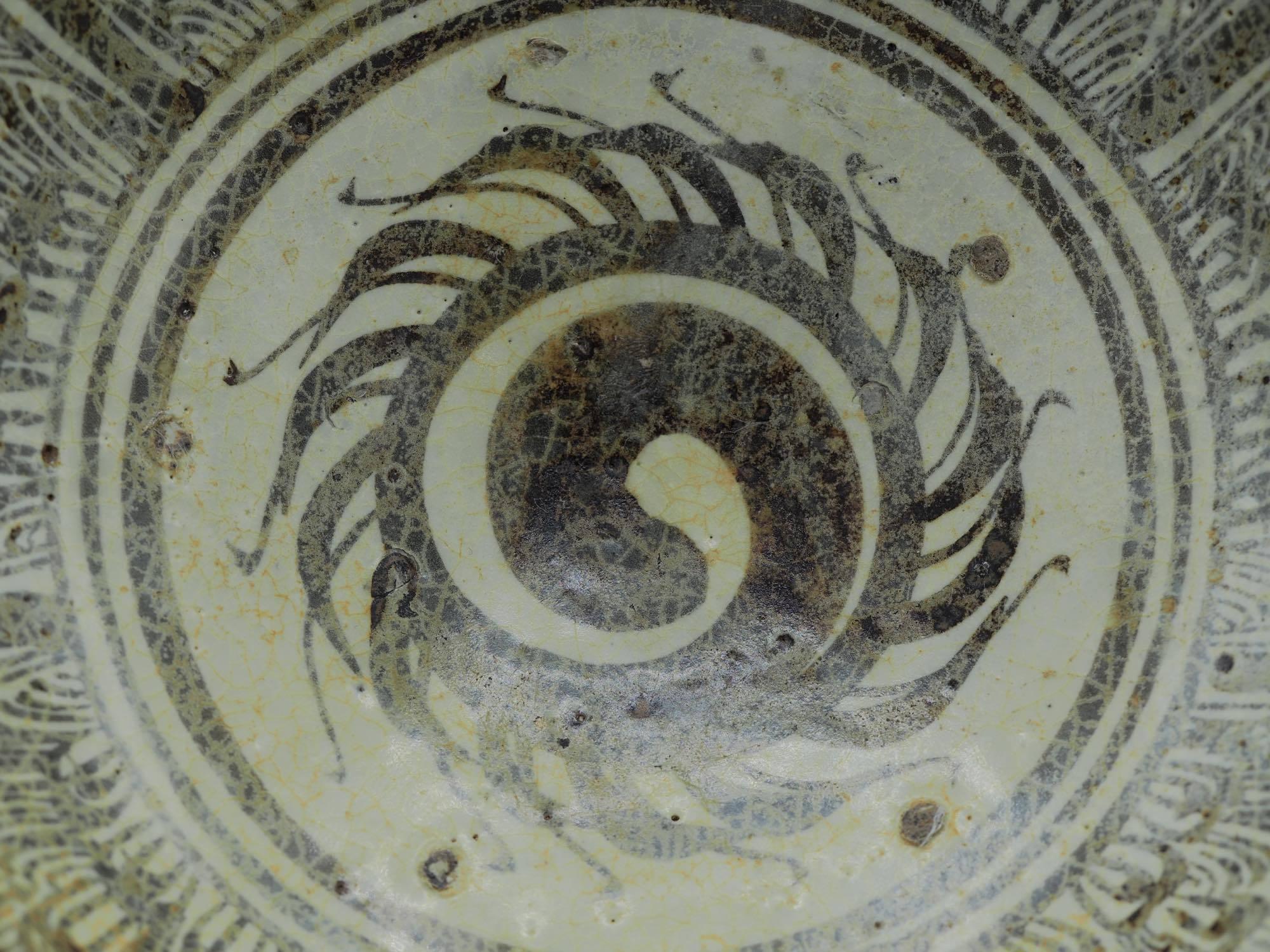 スコタイ 鉢8