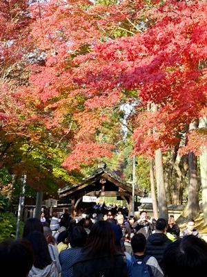 東福寺観光客1812