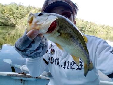 蟠竜湖数釣りマスターw