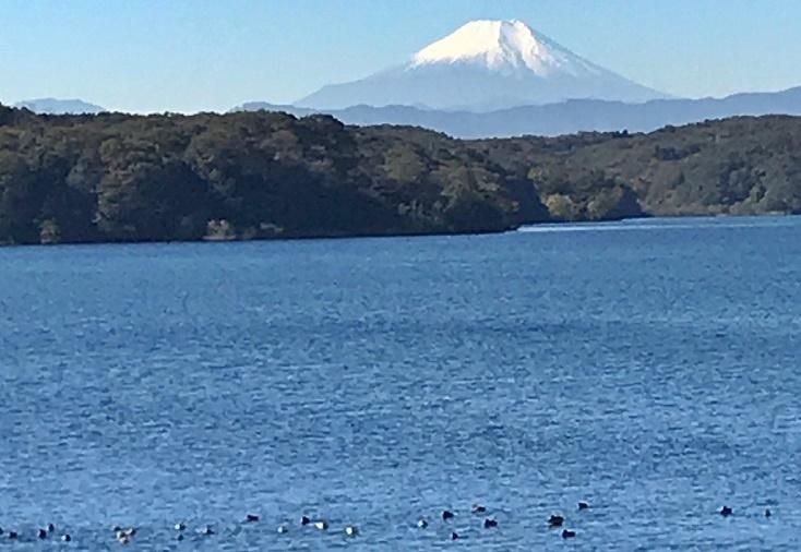 叔父からimage1-2019富士