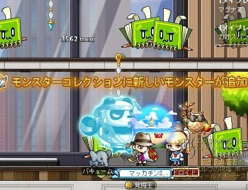 Maple_18126a.jpg