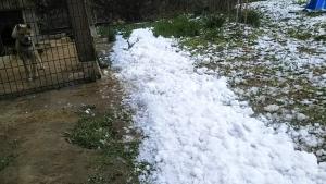 190126屋根から落ちた雪
