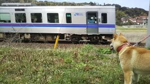 190321列車がきたよ1