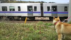 19031列車が行くよ