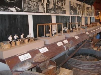 海の博物館・6