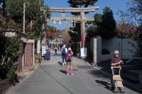 BL181111熊野街道マラニック2-11IMG_8599