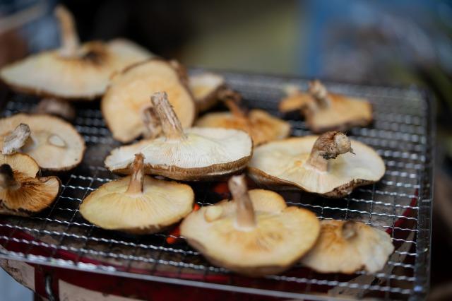 椎茸&BBQ-08