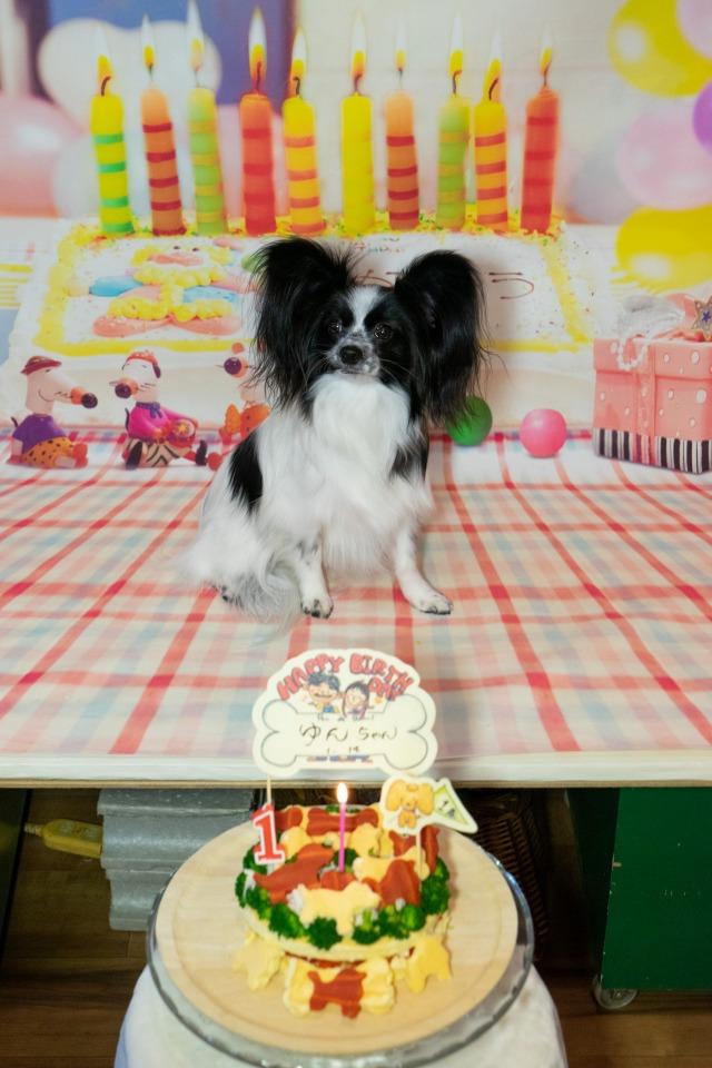1歳のお誕生日-1
