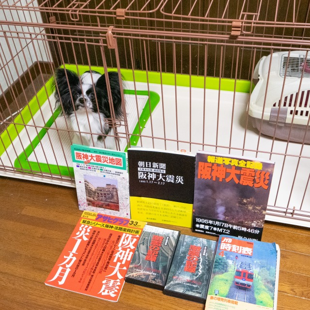 阪神大震災-1