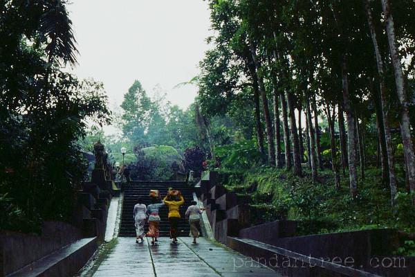 バトゥカウ寺院1