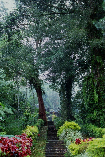 バトゥカウ寺院3