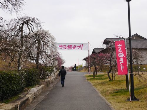 19,2,21 神崎緑地公園 (1)