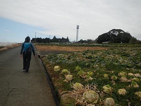 201902_ODAWARA_01.jpg