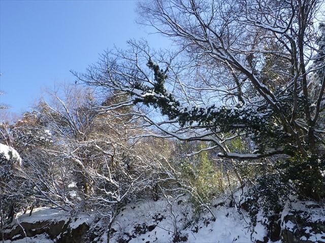 雪の英彦山へ-3