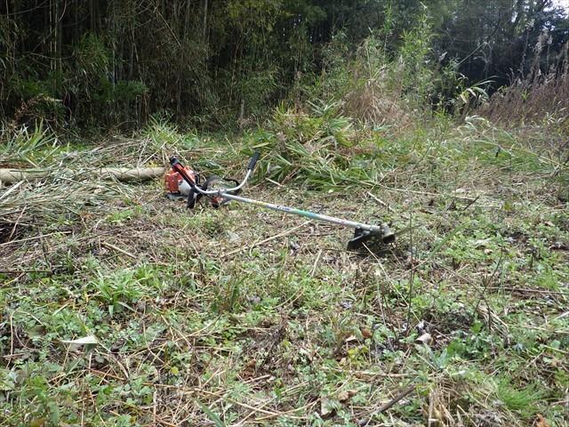 第二農園の竹刈り-2