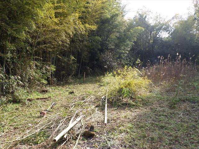 第二農園の竹刈り-4