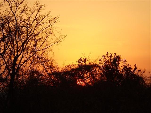 駐車場から見た夕焼け