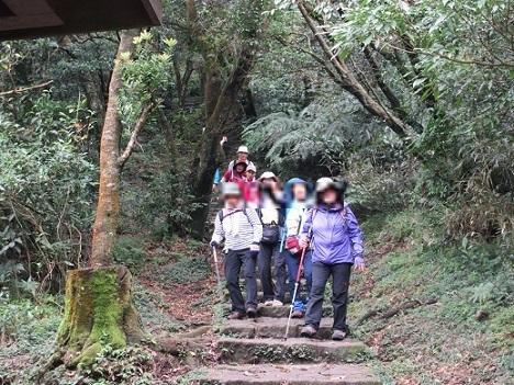 9 平坦な登山道となる分岐点