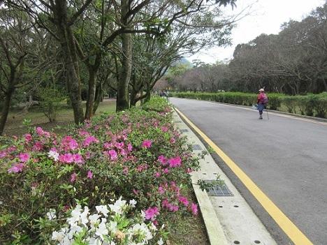 15 陽明山国家公園 游客中心付近