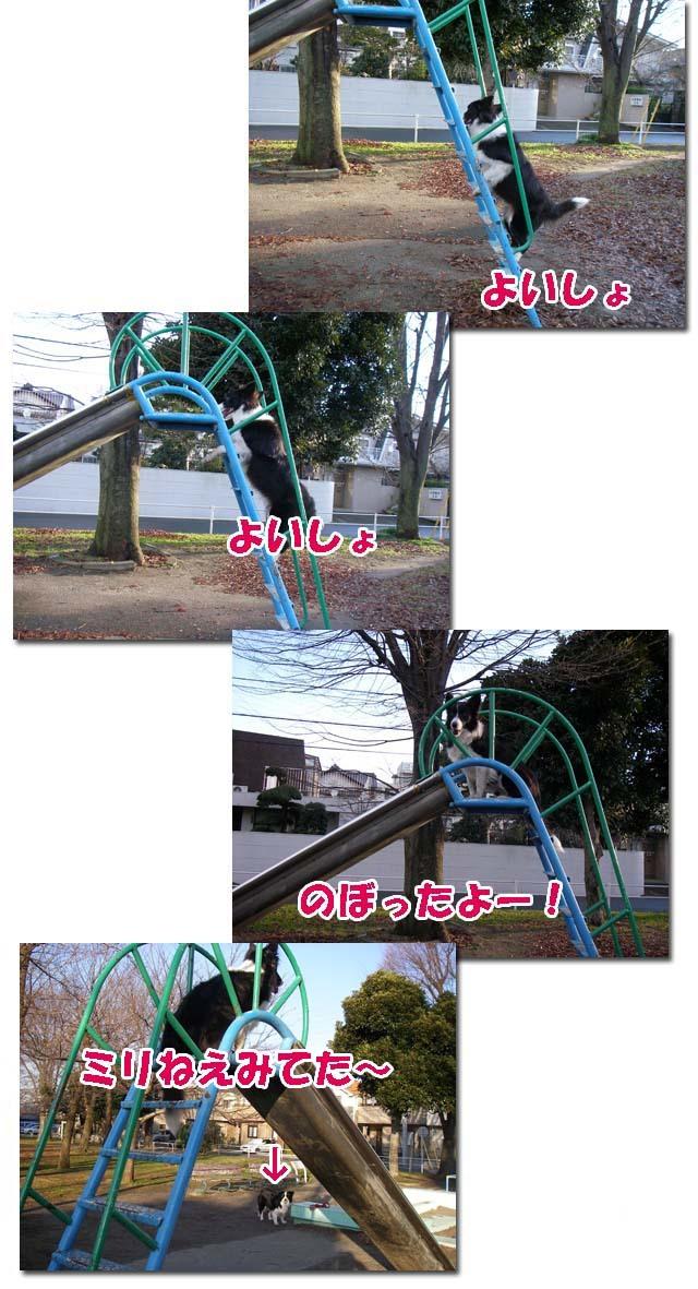 1-f0114893_2334964.jpg