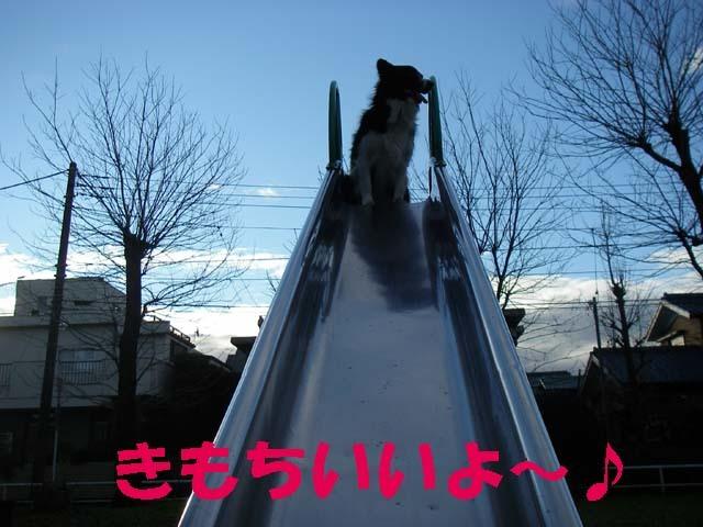 f3-0114893_23382531.jpg