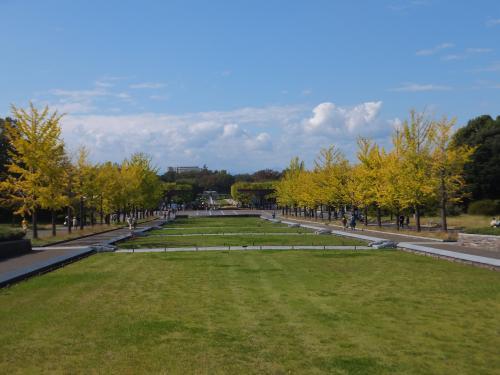昭和天皇記念公園1