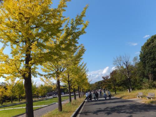 昭和天皇記念公園2