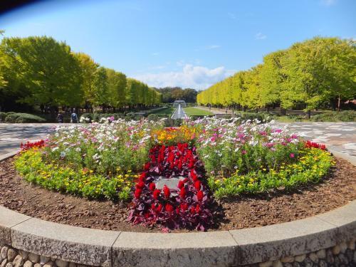 昭和天皇記念公園3